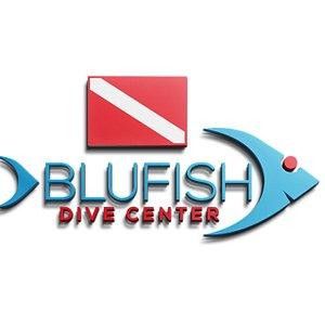 BluFish Logo
