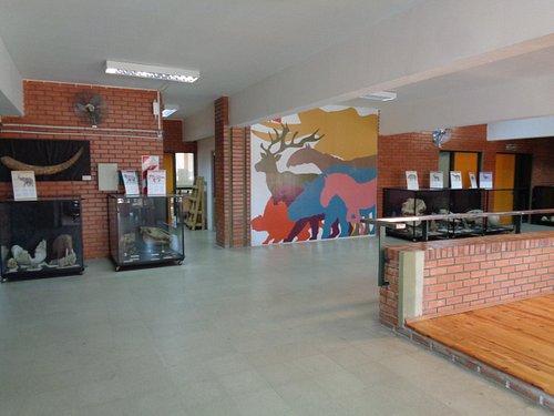 Hall de entrada del Museo