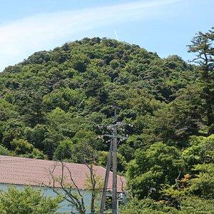 三角形の小高い丘のような山