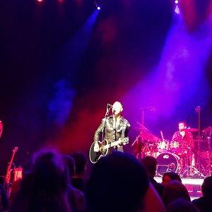 Neil Diamond Tribute Band