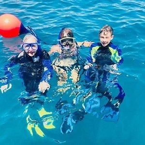 Snorkeling at Tuhua Mayor Island