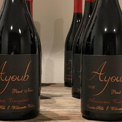 Ayoub Wines