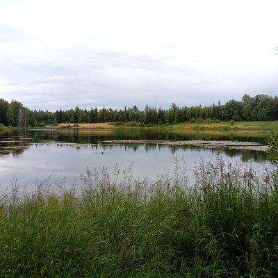 Taku Lake