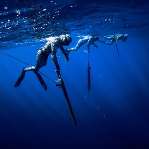 Spearfishing - Blue Water hunting