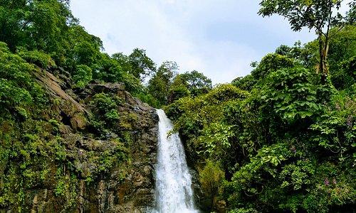Ninai Falls