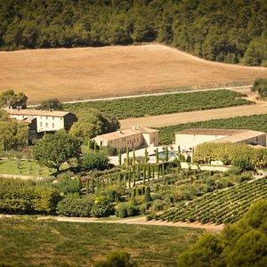 le château Val Joanis entre vignes et pinèdes