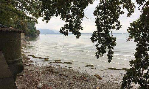 Blick Richtung Rheinzulauf