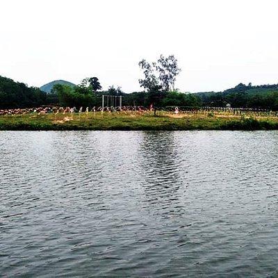 Những bức ảnh được chụo tại Đảo Chè Thanh Chương.