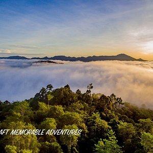 Sunrise in Danum Valley