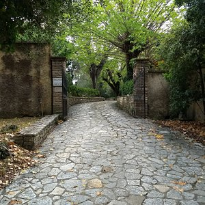 The path that leads to the museum
