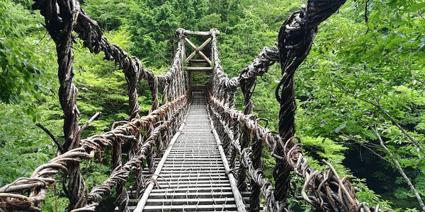 Male bridge