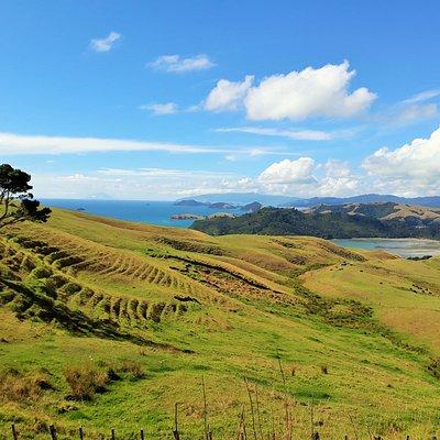 Scenes of the Coromandel Peninsula