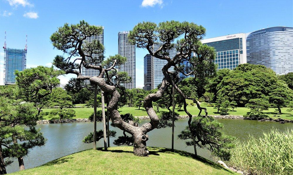 Токио. Сады Хама Рикью.