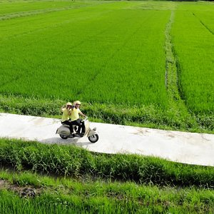 for Riding through the rice field