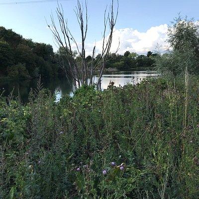 Tiddenfoot lake
