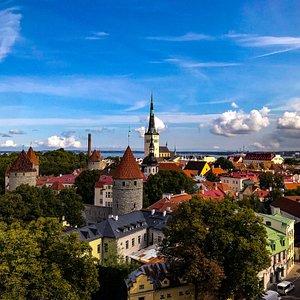 Walking tour in Tallinn