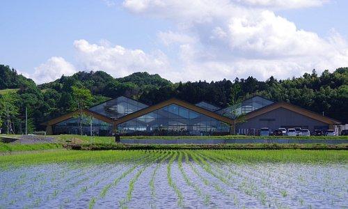 田んぼに浮かぶ道の駅 rice field & michinoeki-mashiko