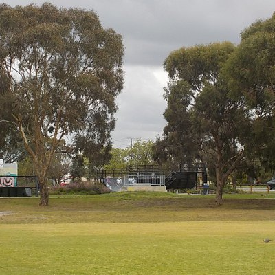 Skate park past the trees