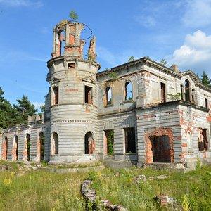Дениши, Руины дворца семьи Трещенко