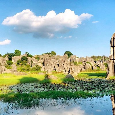 Kunming Stone Forrest Geopark