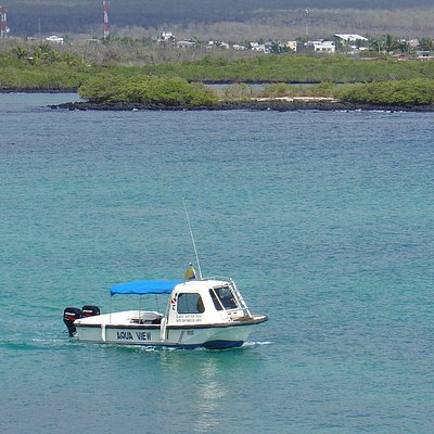 "The bay tour, also known in Spanish as ""Tour de Bahía"", is a must in the Galápagos Islands."