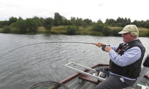 5th fish on