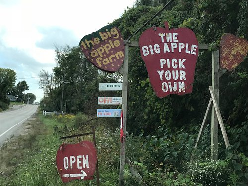 A Bit Expensive,Minimum Order When You Enter the Orchard