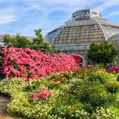はな阿蘇美のRose Garden 10月13日から 秋のバラ祭り 開催します。