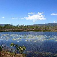 Cape Melville National Park (CYPAL)