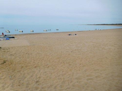 La plage et l'océan