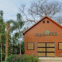 WeGreen : Samui Culture | Veggie Farm | Healthy Restaurant