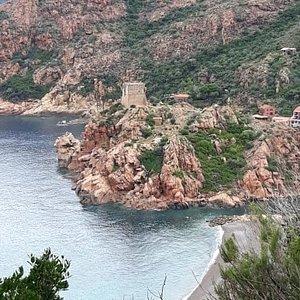 La plage et la tour génoise