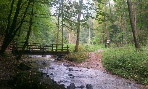Kolejny mostek nad Racławką