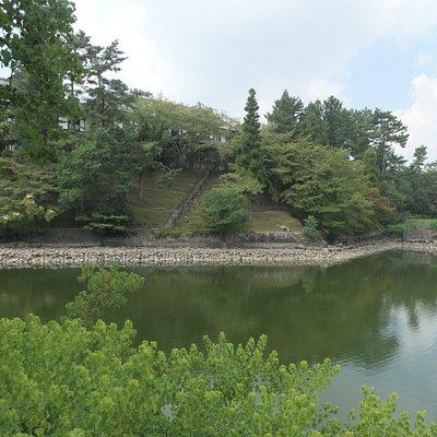 猿沢の池とは雰囲気が違いますね。