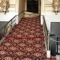 New Carpet and Remodel
