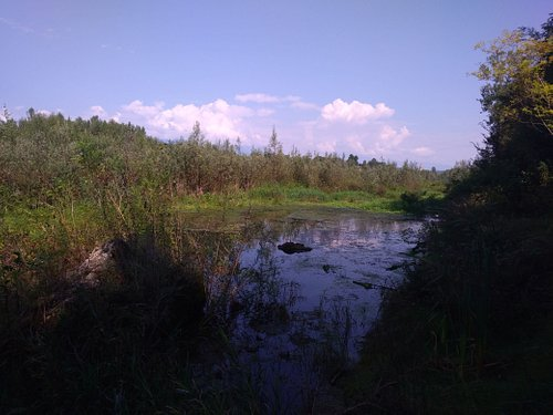 Parallel to the Piave river, the stream originating from a karst resurgence.