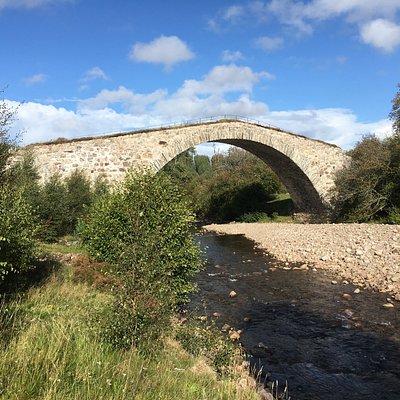 Sluggan bridge - from the river bank