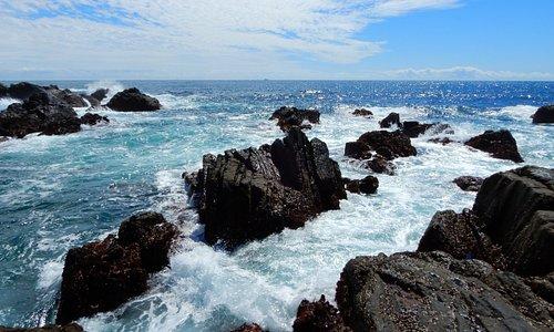 さすがは太平洋だけあって岸には絶え間なく激しい波が打ち寄せます