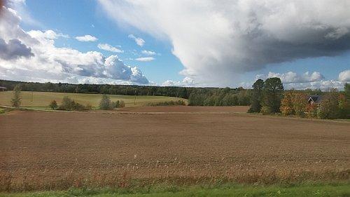 Fields in Ostrobothnia