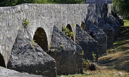 Arches et contreforts