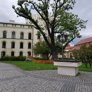 Muzeum Miejskie w Żywcu