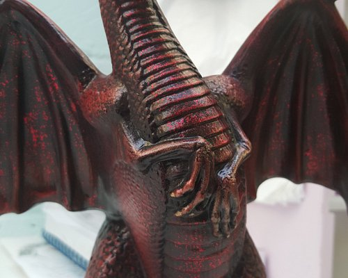 One of our Dragons