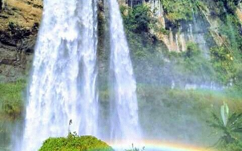 Coffee tour,chameleons, rainbows and 100 and 85 metre falls respectively makes sipi falls beauti