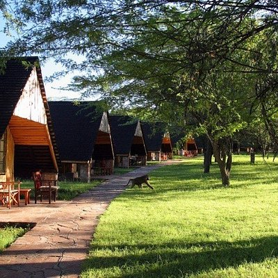 Lake Nakuru Lodges