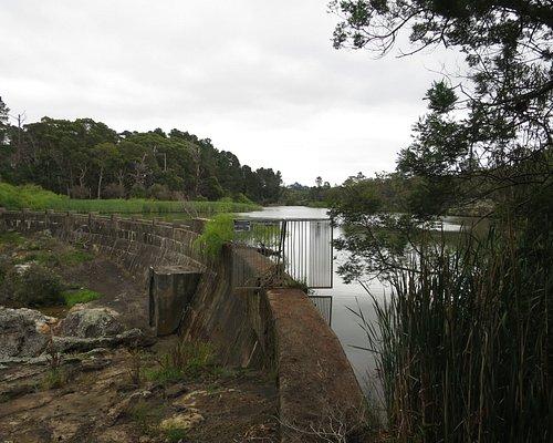 Nattai Creek Dam
