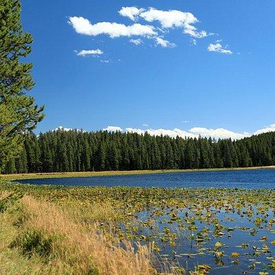 Wrangler Lake, Yellowstone National Park