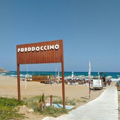 Freddoccino Beach Bar Impressions