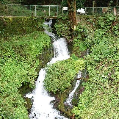 日本名水百選「箱島湧水」