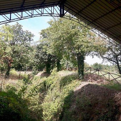 Area archelogica