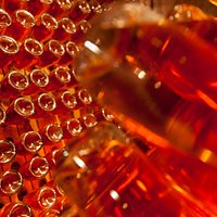 Champagneria